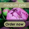 Medium Pink Peony Bouquet